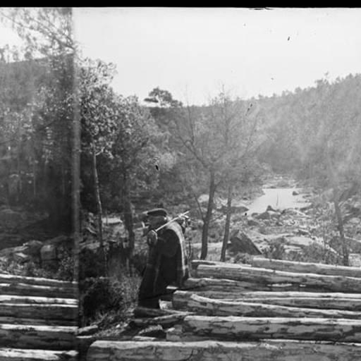 Home recolzat en una pila de troncs tallats. Fons: Arxiu Memòria Digital de Catalunya.
