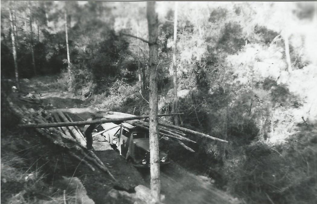 Carregador a l'obaga Gran de la Rabassola, 1950Fons: arxiu La Rabassola