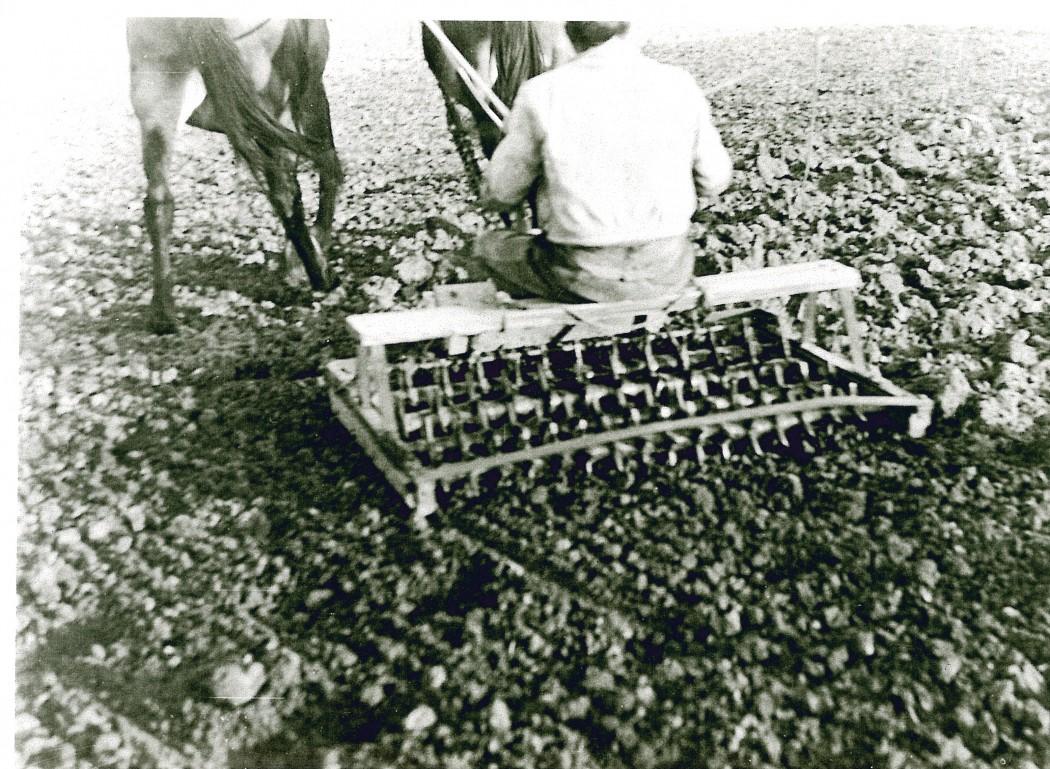 Anys trenta, passant el rasclet. Fons: Arxiu Exposició Matamargó