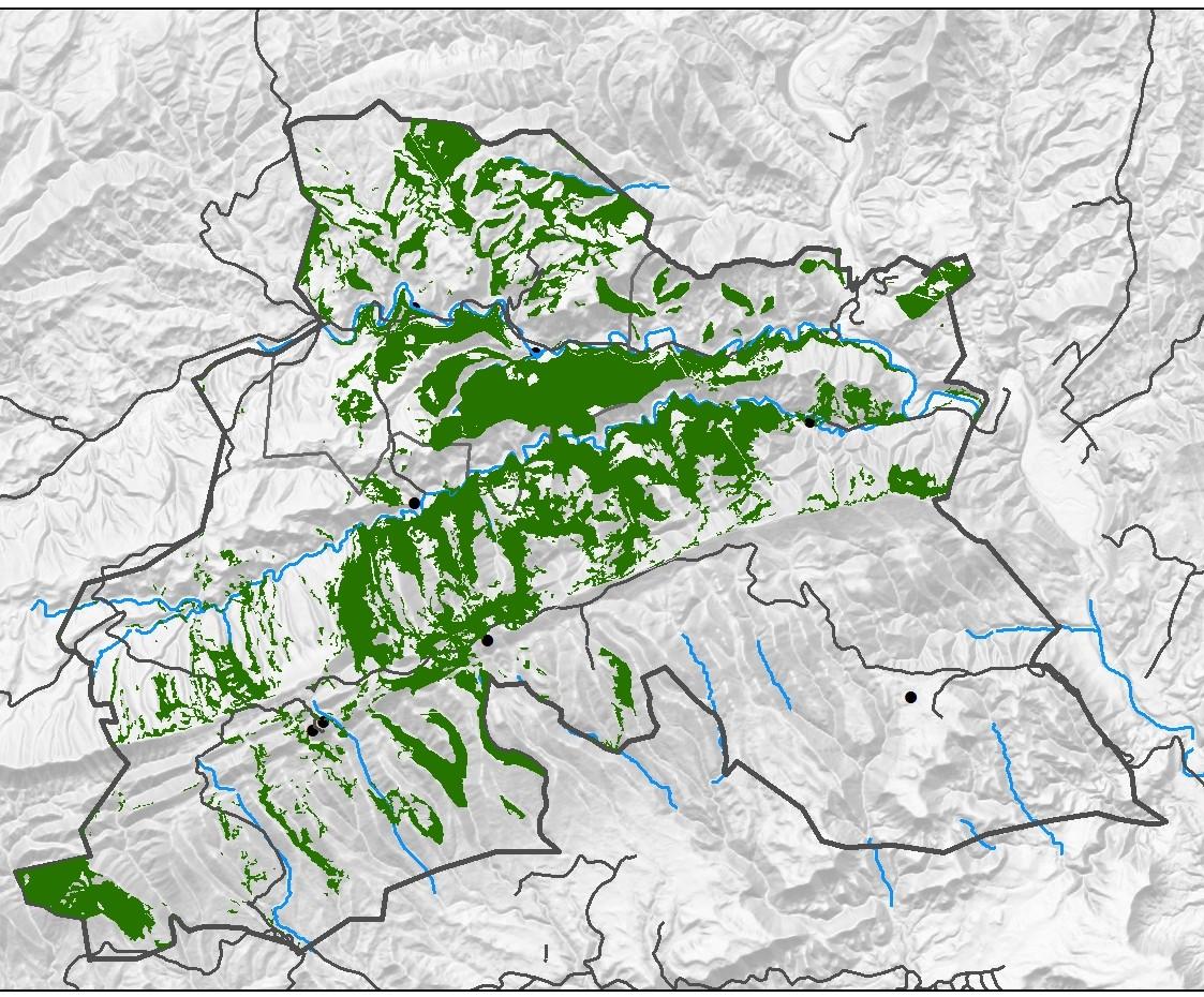 Distrubució de la pinassa, 2009